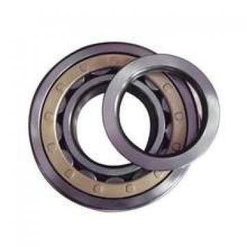 Cylindrical Roller Bearing NJ224 NJ 224 120 RJ 02 120x215x40 mm