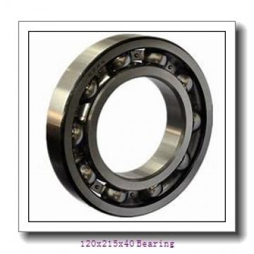 NJ224 E Cylindrical Roller Bearing NJ-224E 120x215x40 mm